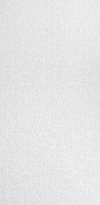Impression Homestyle Ceilings Textured Paintable 2 X 4