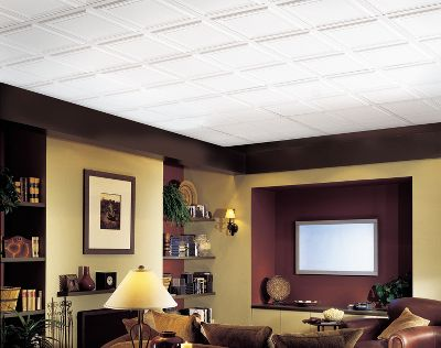 Drop Ceiling: Raised Panel