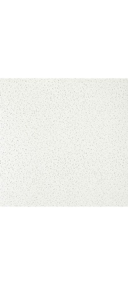 Fine Fissured Contractor Series Textured Paintable 2 X 2