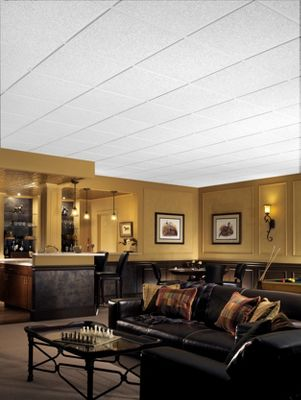 Brighton Homestyle Ceilings Textured Paintable 2 X 2