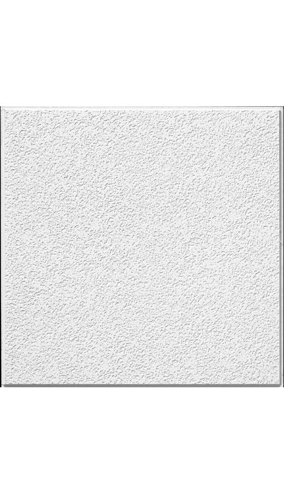 Brighton HomeStyle Ceilings Textured Paintable 2u0026#39; x 2u0026#39; Panel 266 by Armstrong