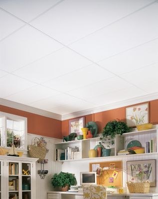 Plain White Homestyle Ceilings Smooth Paintable 2 X 4
