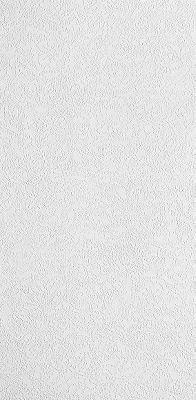 Esprit Fiberglass Contractor Series Textured White 2 X 4