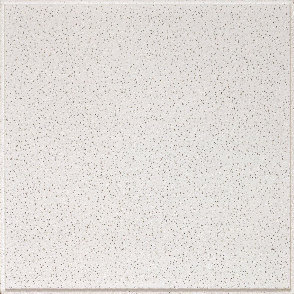 Fine Fissured Contractor Series Textured Paintable 2' x 2 ...