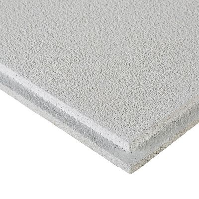 Oasis Homestyle Ceilings Smooth Paintable 2 X 2 Panel