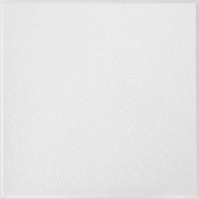 Oasis Smooth White 2' x 2' Panel #296