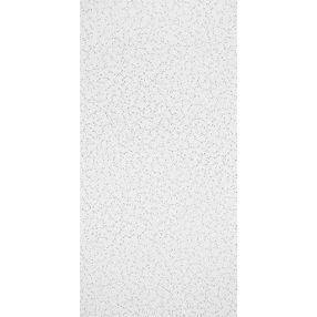 Random Textured Textured White 2' x 4' Panel #933