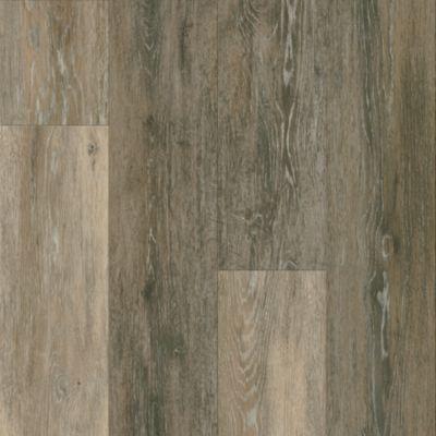 Primitive Forest - Falcon Vinilo de Lujo A6423