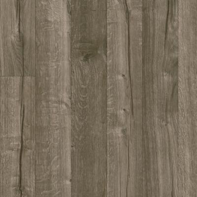 Titan Timbers - Silver Dapple Vinyl Sheet X4652