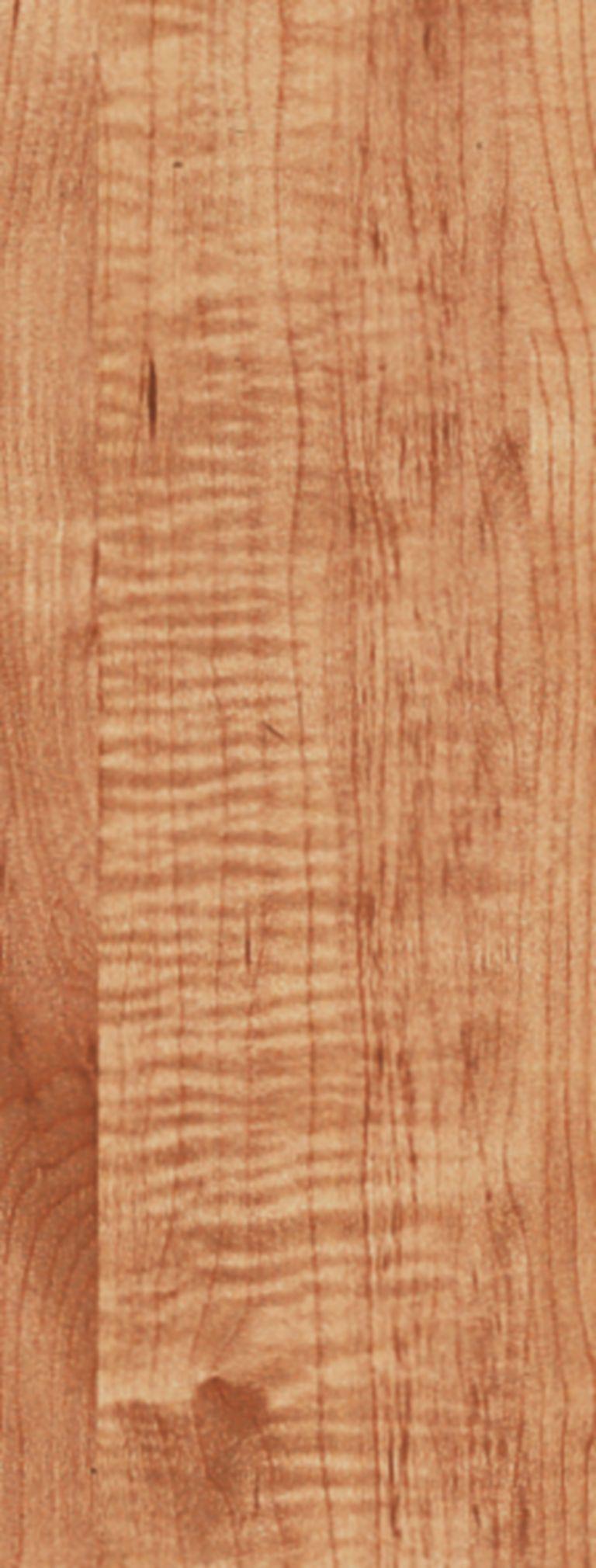 Exotics - Tiger Maple Laminate L6535