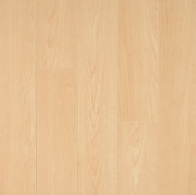 American Maple Laminado L8712