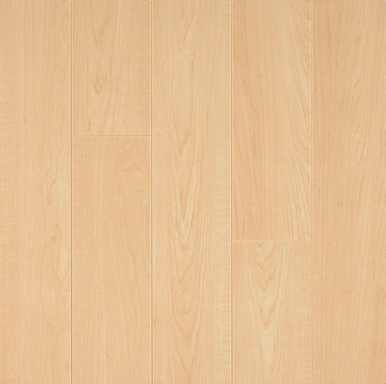 American Maple Laminate L8712