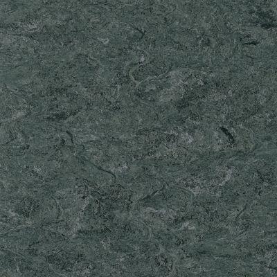 Marmorette - Charcoal Gray Linoleum LS059