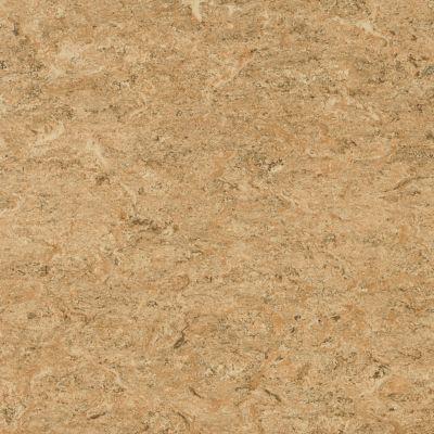 Marmorette - Bamboo Tan Linoleum LS070