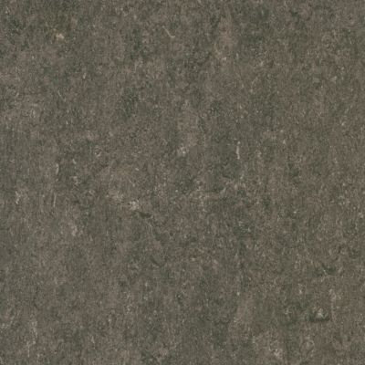 Marmorette - Rhinoceros Linóleo LS583