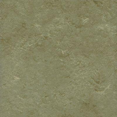 Marmorette - Evening Moss Linoleum LS585