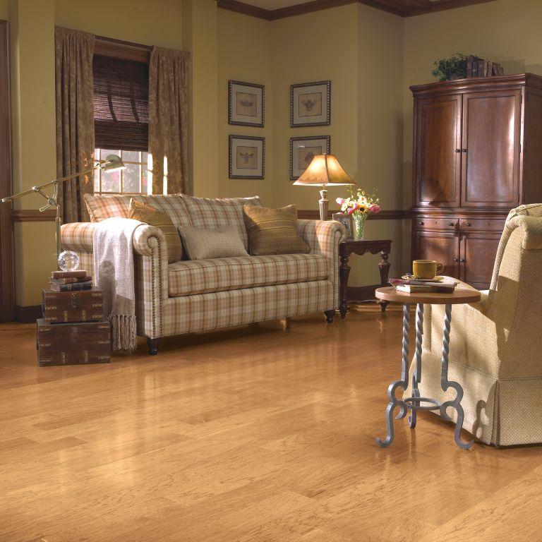 Room Scene