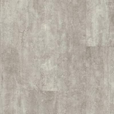 Cinder Forest - Gray Allusion Vinilo de Lujo U2020